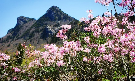 $25 for a Visit to Grandfather Mountain for Two (Up to $40 Value)