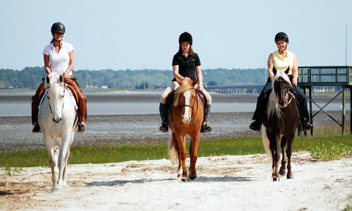 Camelot Farms Equestrian Center - Saint Helena Island: Horseback Coastline Trail Rides for Two or Four at Camelot Farms Equestrian Center on St. Helena Island (Up to 55% Off)