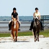 Up to 55% Off Horseback Trail Rides for Two or Four