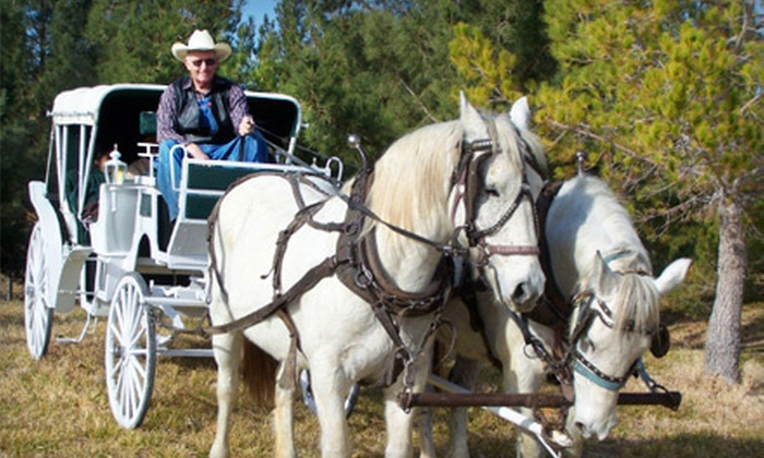 Mount Charleston Trail Rides - Clark: $15 for a 30-Minute Carriage Ride from Mount Charleston Trail Rides ($30 Value)