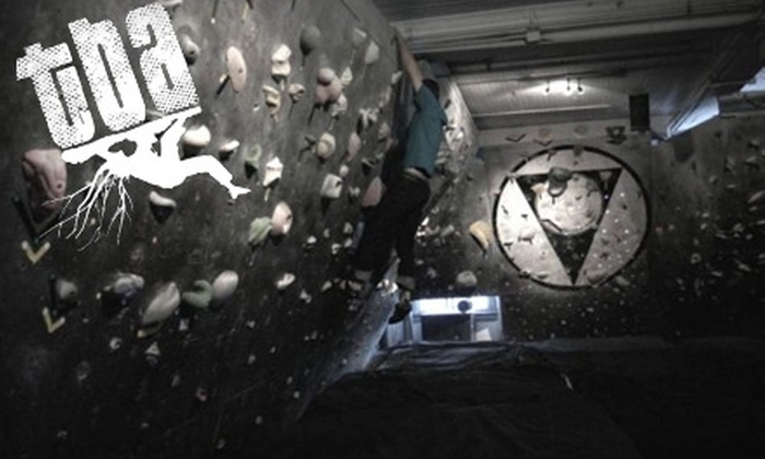 Tennessee Bouldering Authority - St. Elmo Improvement League: $25 for A One-Month Membership to Tennessee Bouldering Authority