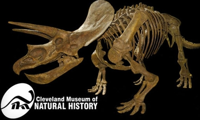 Cleveland Museum Of Natural History In Cleveland Ohio Groupon