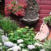 $5 for Plants at Jessica's Garden in Marlborough