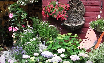 $10 Groupon to Jessica's Garden - Jessica's Garden in Marlborough