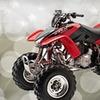 Up to 58% Off ATV Rental in Borrego Springs