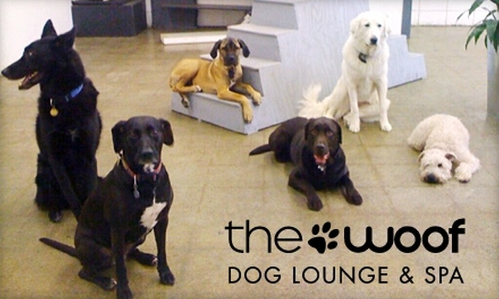 The Woof Dog Lounge & Spa - West Central Valley: $12 for One Day of Doggie Daycare from The Woof Dog Lounge & Spa ($25 Value)