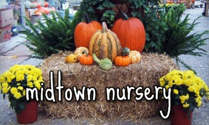 Midtown Nursery - Multiple Locations: $25 for $50 Worth of Plants and Supplies at Midtown Nursery
