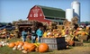 $10 for Fall Decorations and Hayride in Northville