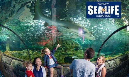 Sea Life Sydney Aquarium In Darling Harbour Nsw Groupon