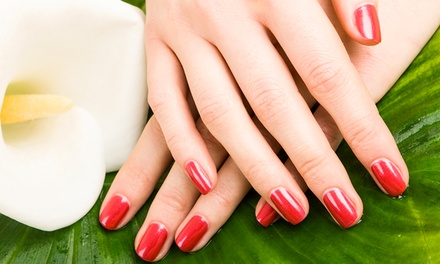 $47 for a Spa Mani-Pedi Package for New Clients at Excelsior Nails & Day Spa on the Bay ($79 Value)