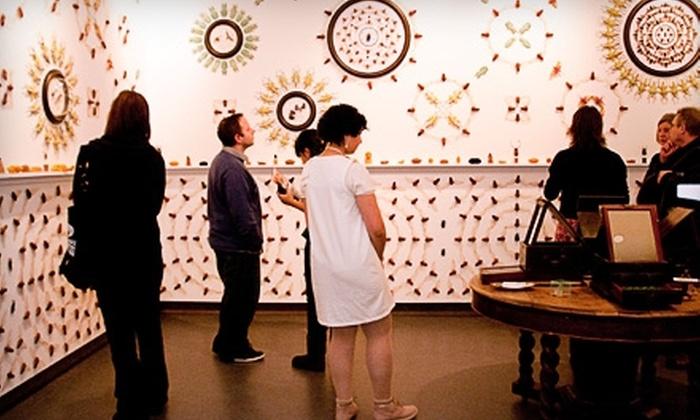 Ottawa Art Gallery - Ottawa: Membership Packages to the Ottawa Art Gallery. Three Options Available.