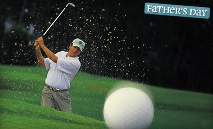 Airpark Golf Academy: 50-Minute Individual Lesson - Airpark Golf Academy in Titusville