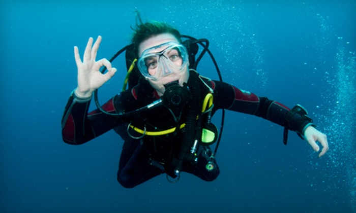 Texas Dive Center - Southbelt/ Ellington: Two-Hour Scuba-Diving Class for One or Two at Texas Dive Center (Up to 64% Off)