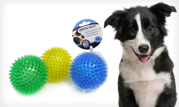 Rubber Dental Balls by Bow-Wow Pet: $11 for a Three Rubber Dental Balls by Bow-Wow Pet ($21.99 List Price). Two Color Combinations Available. Free Returns.