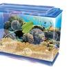 Sea-Quarium Aquatic Life Starter Kit
