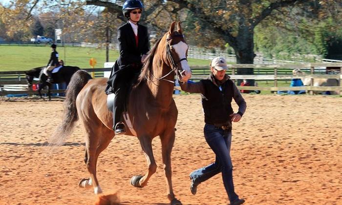 Gold Leaf Training - Abbotts Creek: Two Horseback-Riding Lessons at Gold Leaf Training (56% Off)