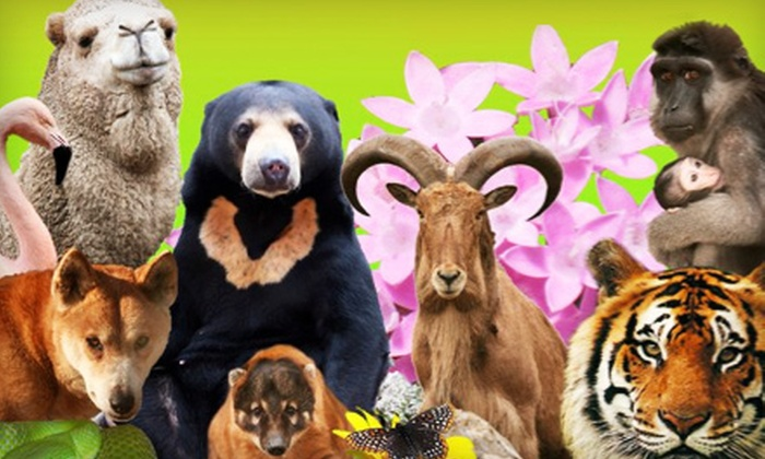 Catoctin Wildlife Preserve and Zoo - Thurmont: Zoo Admission, Wildlife Adoption, and Member Benefits at Catoctin Wildlife Preserve and Zoo in Thurmont. Four Options Available.