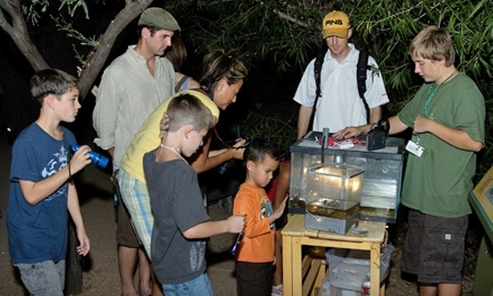 Desert Botanical Garden - Phoenix: Garden Flashlight Tour at Desert Botanical Garden