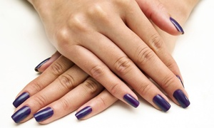 Shawn Kyle Permanent Cosmetics Nails and Laser: Mani-Pedi Packages at Shawn Kyle Permanent Cosmetics Nails and Laser (Up to 54% Off). Three Options Available.