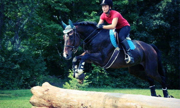Another Farm - Woodbury: One or Three 60-Minute Horseback-Riding Lessons for Two at Another Farm (Up to 54% Off)