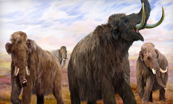 "Anchorage Museum at Rasmuson Center - Downtown: $24 for Two Adult Tickets to the ""Mammoths and Mastodons"" Exhibit Plus General Admission at the Anchorage Museum at Rasmuson Center ($48 Value)"