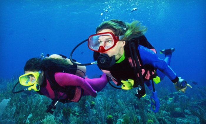 Sea Lions Dive Center - Hanover Park: Scuba-Certification Courses at Sea Lions Dive Center in Schaumburg (Up to 52% Off). Three Options Available.