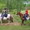 Up to 53% Off Horseback Rides in Lexington