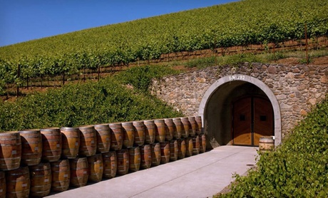 Tour Sonoma County's Rolling Vineyards
