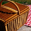 Up to 55% Off Picnic and Winery Tour at Miracle Valley Vineyard