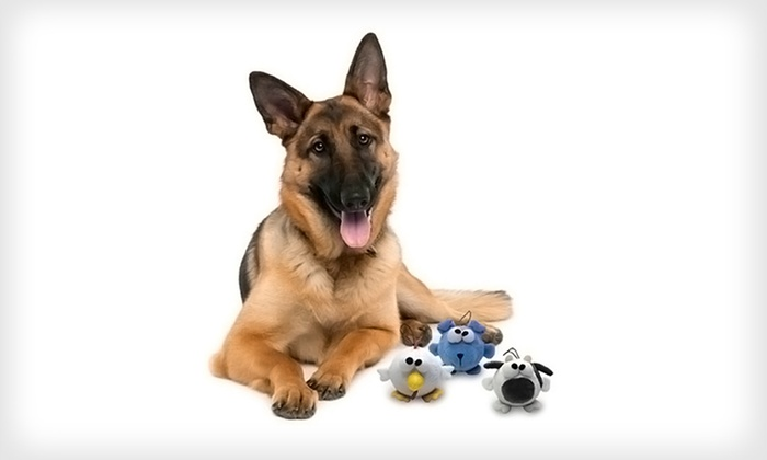 Animal Bouncy Ball Dog Toys: $10 for a Set of Three Bow-Wow Pet Animal Bouncy Ball Dog Toys ($24.99 List Price). Two Options Available. Free Returns.