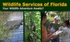 Wildlife Services of Florida - Tampa Bay Area: $12 for the Welcome to Florida Nature Hike with Wildlife Services of Florida ($25 Value)