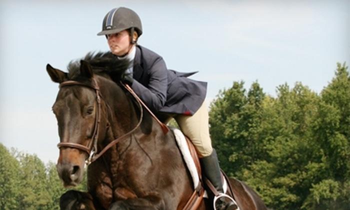 Equilibrium Horse Center - 2: $30 for a One-Hour Private Horse-Riding Lesson at Equilibrium Horse Center ($65 Value)