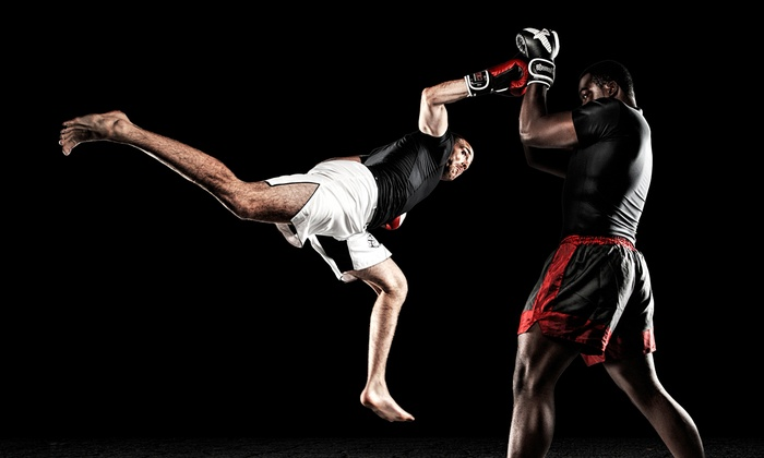 Warrior Arts Academy - Vaughan: 10 or 20 Martial Arts Classes at Warrior Arts Academy (Up to 78% Off)
