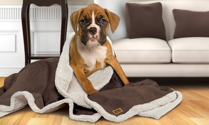 Animal planet faux suede blanket groupon goods for Animal planet dog blanket