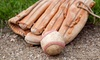 Up to 56% Off Batting Practice and Kids' Baseball Camp