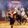 """Big Apple Circus – Up to 41% Off """"Luminocity"""""""