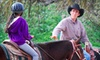 Up to 64% Off Horseback Riding