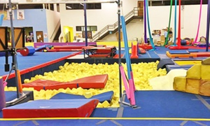 The Palaestra: Five or Ten Kid's Open-Gym Passes at The Palaestra (Up to 51% Off)