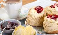 Cream or Afternoon Tea with Stable Tour for Two or Four at Hayrack Cafe at Quob Stables