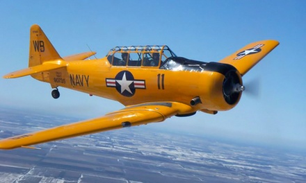 40-Minute Ride in a Extra 300L Stunt Airplane or T-6 Texan Trainer Warplane from Gauntlet Warbirds (41% Off)