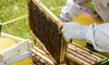 Ruhl Bee Supply - Far West: Introduction to Beekeeping Class for One or Two on March 11, 2017 at Ruhl Bee Supply (Up to 38% Off)