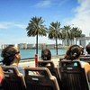 Up to 51% Off Miami-Sights Bus Tours