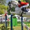 48% Off Horseback-Riding Lessons