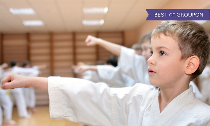Go2Karate - Cincinnati: 10 or 16 Martial-Arts Classes and Uniform with Option for Test and a Graduation Belt at Go2Karate (94% Off)