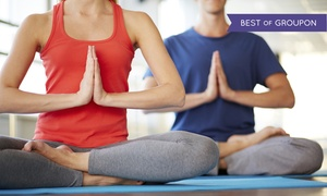 Yoga Darshana Center: 10 or 20 Yoga Classes at Yoga Darshana Center (Up to 55% Off)