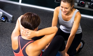 Elite Bodies: 10 or 20 Fitness Classes or One-Month Personal-Training Program at Elite Bodies (Up to 88% Off)