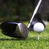 83% Off Golf-Practice Package at Wedges & Woods