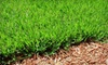 Katerberg VerHage, Inc.: $39.99 for a Spring Fertilization Package with Weed Control from Katerberg VerHage, Inc. ($80 Value)
