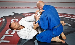 One Kick's Gym: 10 or 20 Brazilian Jiu-Jitsu Classes at One Kick's Gym (Up to 73% Off)