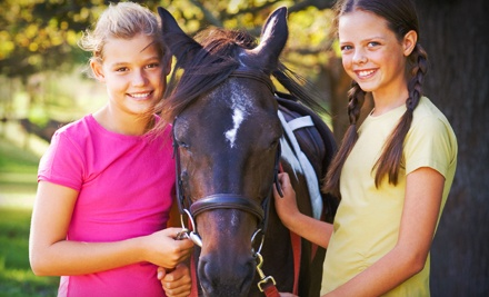 One or Three Private Horseback-Riding Lessons at Double H Equestrian Center (Up to 59% Off)
